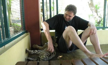 Con los cachorros de tigre