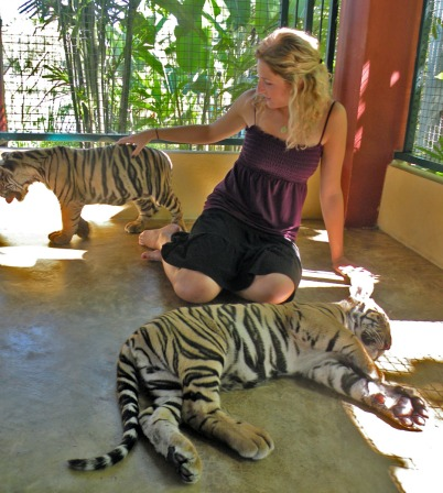 Un tigre, dos tigres...