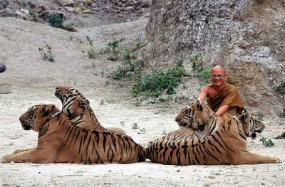 Foto: Web Tiger Temple